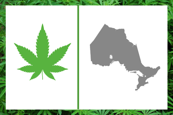 Cannabis in Ontario: An Update