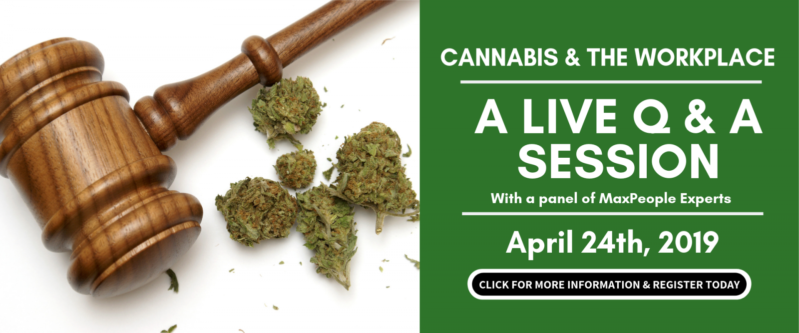 MaxPeople Cannabis & The Workplace Graphic - April 24th Live Q&A