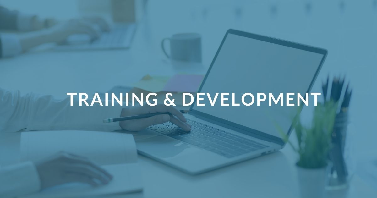 Why You Should Invest In Training